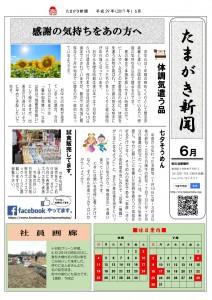 たまがき新聞_H29_6月号