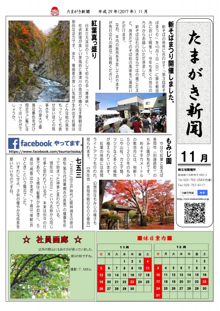 たまがき新聞_H29-11
